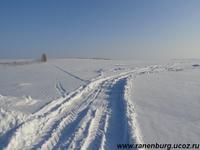 Чаплыгинский район Борщевка