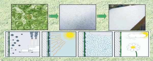 Дизайн керамической поверхности и ее компоненты способствуют этой реакции