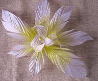 Орхидеи       Af7e15a1013c25a6425fc69463c4dabc_1_s