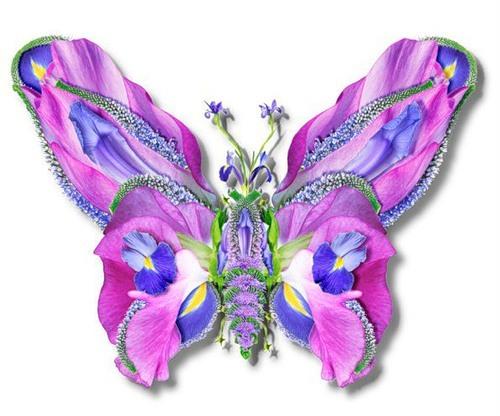 Цветочные фантазии Fe03d6f6384926dc51881237425fe535_10