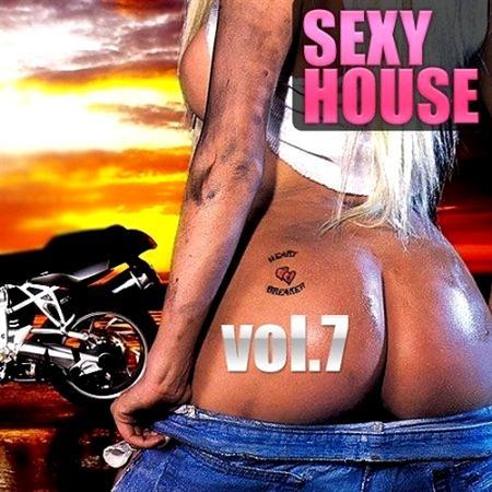 Sexy House vol.7 (2011)